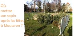 dépôt des sapins à Mouscron du 4 au 29 janvier 2021