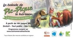 La balade de Pic-Pique le hérisson - le 26 mai de 14h à 18h