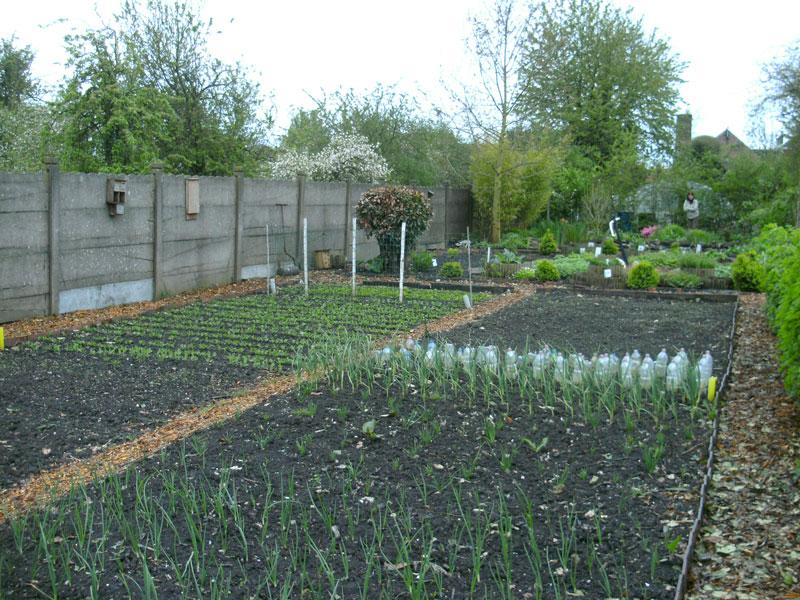 Jardin-au-printemps-parc-lenoir-mouscron.jpg