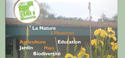Réseau écologique en Wallonie